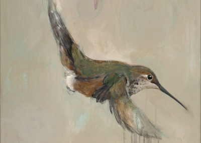 Hummingbird, 36 x 24, Acrylic on canvas