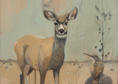 Wren and a mule deer, 20 x 20,  Acrylic on canvas